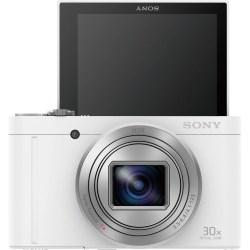 Small Crop Of Sony Dsc Wx500
