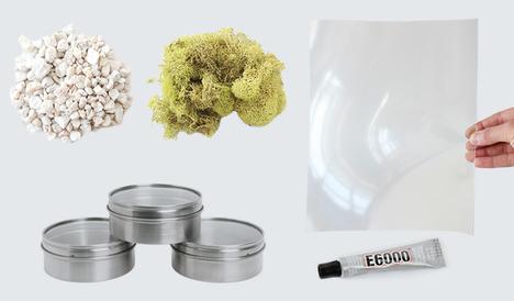 Terrariums-Supplies