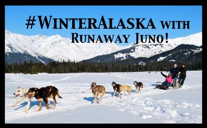Dog-Sledding-WinterAlaska