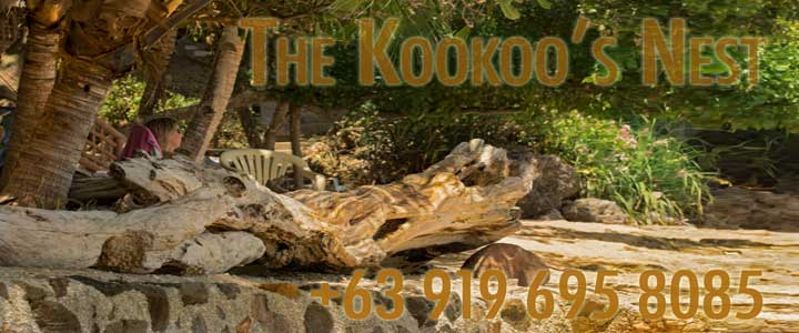 The Kookoo's Nest Resort Zamboanguita Philippines