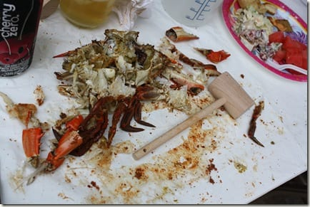 IMG 8225 thumb Crabs