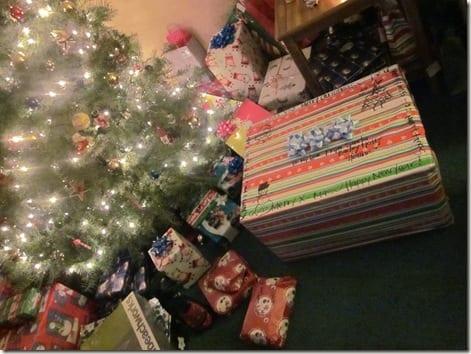 IMG 5536 thumb I Won't Be Home For Christmas