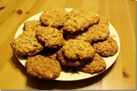 IMG 0008 800x533 thumb Oatmeal Cookies and a 20 Mile Run