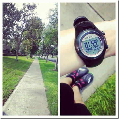13 mile run 800x800 thumb Silent Saturday–A Watermelon and a cat