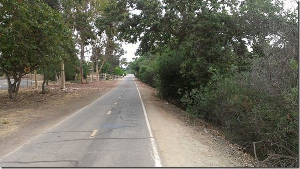 running path in orange county 800x450 thumb Silent Saturday–A Watermelon and a cat