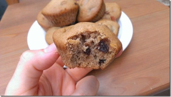 chocolate chip muffin 800x450 thumb Friday Favorites–Revlon Eyeliner and Brighter vlog