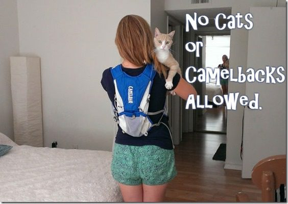 no cats or camelbacks at races thumb How the Boston Marathon bombing is changing other Marathons