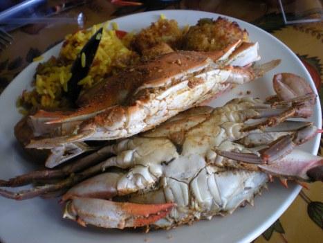 dscn0828 My first crabs...