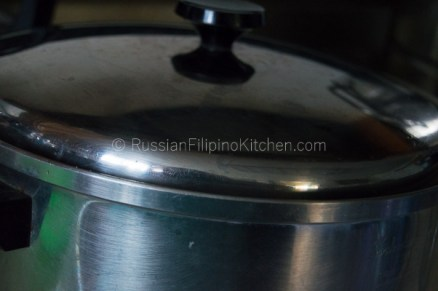 Tinolang Manok (Filipino-style Chicken Soup) 13