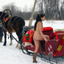 Smiling brunette in sleigh