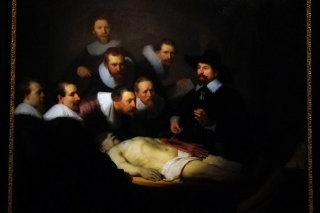 Outstanding The Anatomy Lesson Painting Image - Image of internal ...