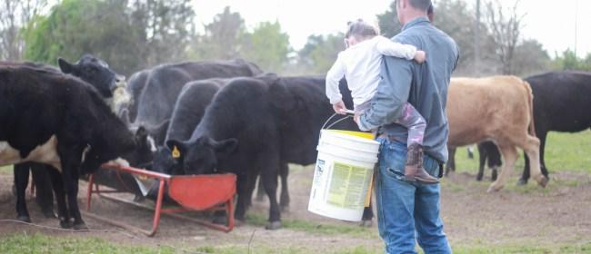 On The Farm: Sunday Funday Family Chores