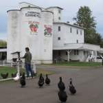 Tour Thompson's Mills State Heritage Site in Oregon