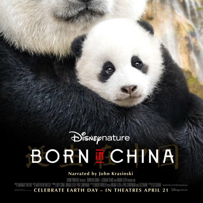 Resultado de imagen para born in china