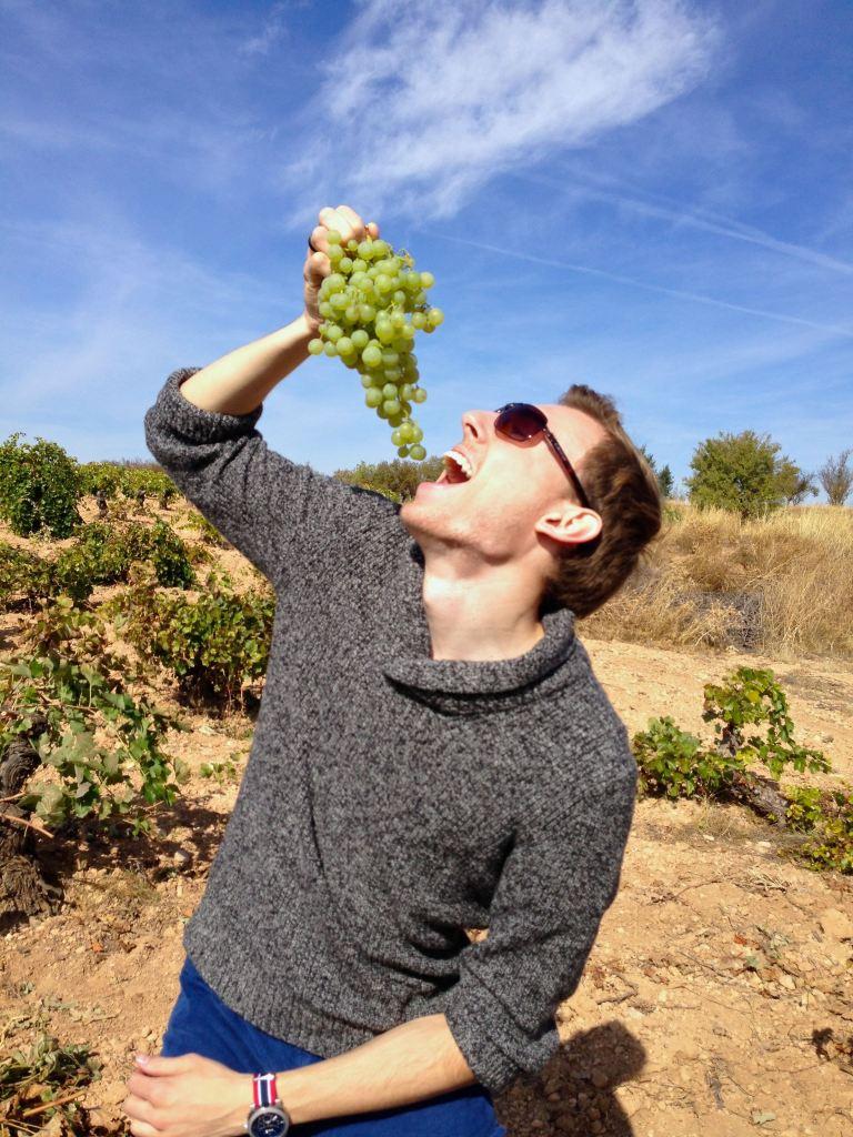 Pre-bottled Wine Tasting