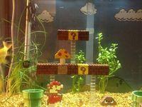 Fish tanks on Pinterest   Fish Tanks, Aquarium and Goldfish