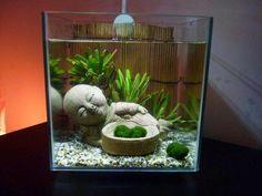 DIY Aquarium on Pinterest   Aquarium, Freshwater Fish and Fish Tanks