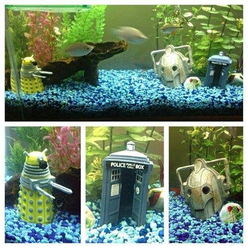 Doctor Who theme aquarium | Doctor Who | Pinterest