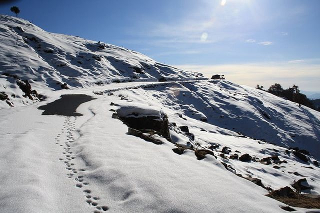 Winter view of #Chopta_Tungnath_Garhwal with TravellerBaba.com