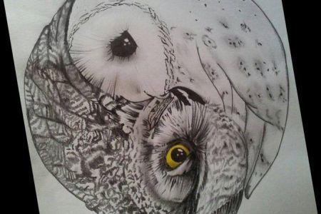 9277e179f5401d4b428780013ed95edc owl tattoo design tattoo designs