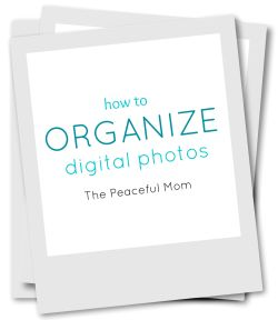 Small Of How To Organize Digital Photos