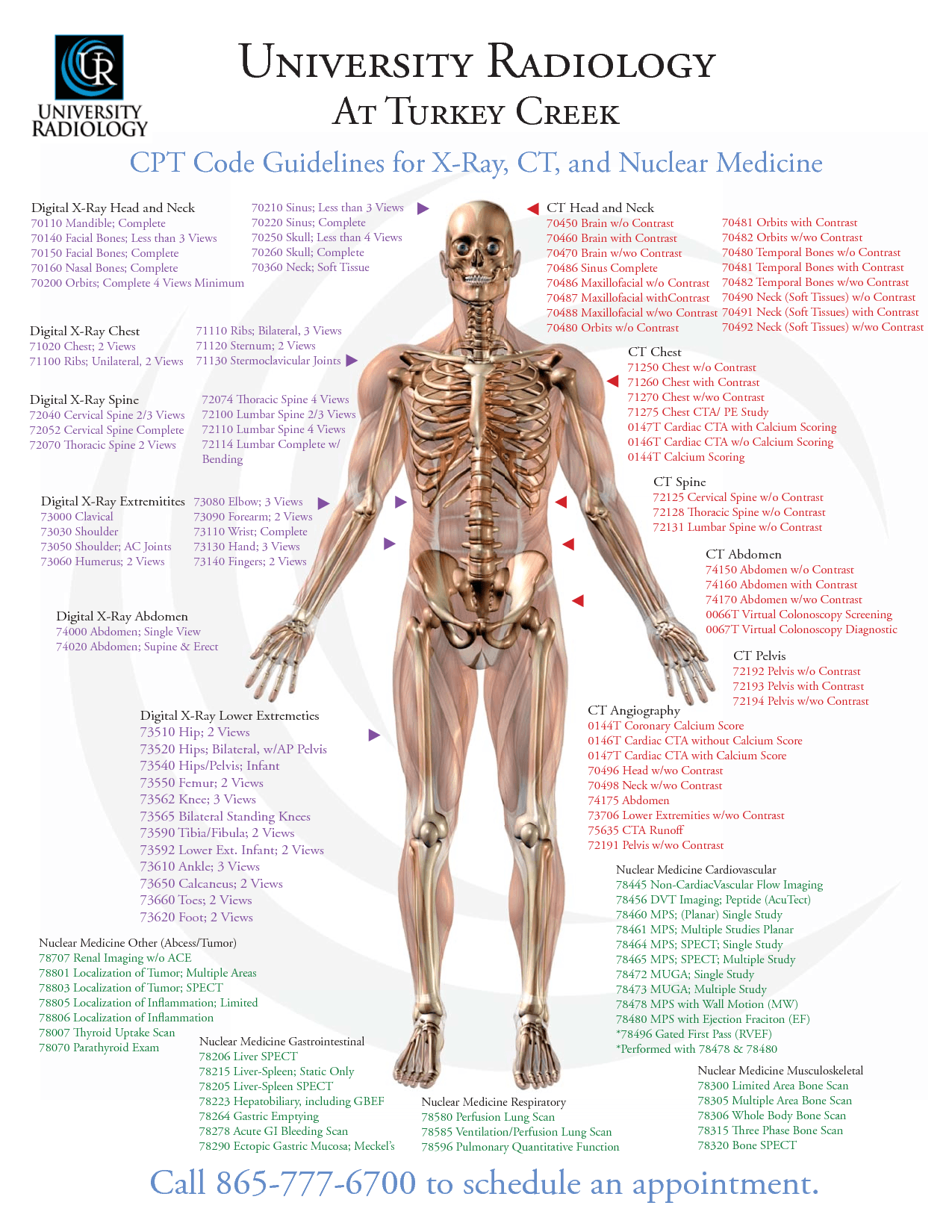 image of Bone Scan Cpt Code Whole Body 01