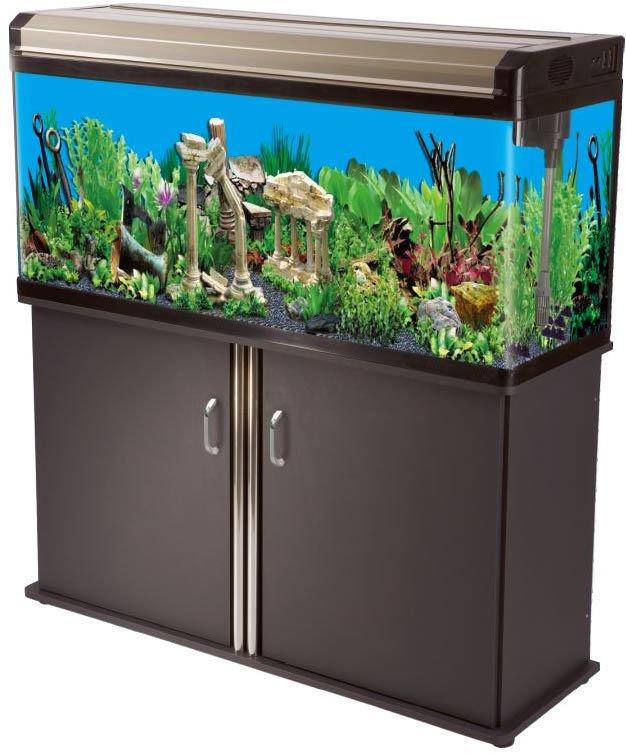 Aquarium 65 Gallon Aqueon 65 Gallon Aquarium Ensemble