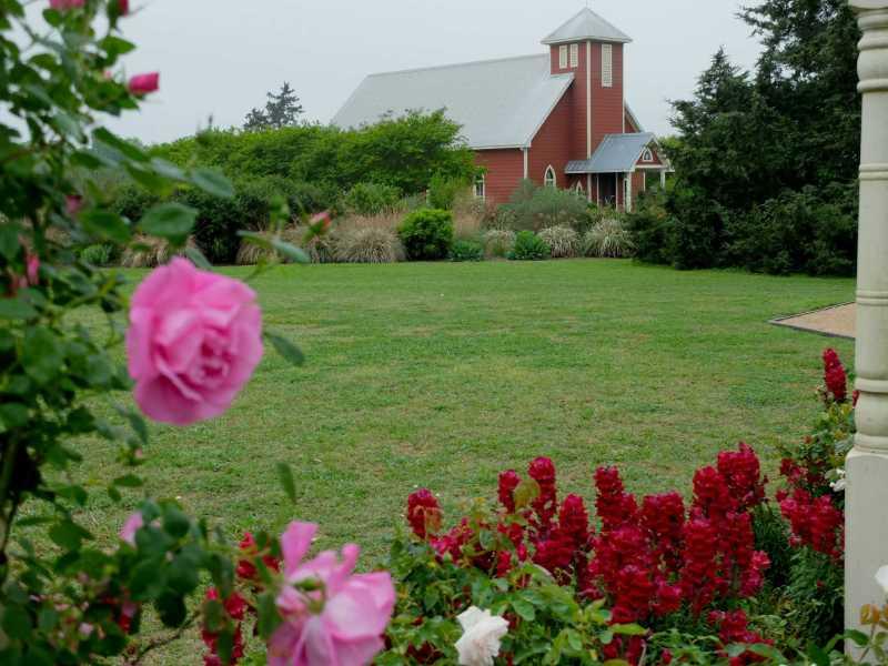 Large Of Antique Rose Emporium