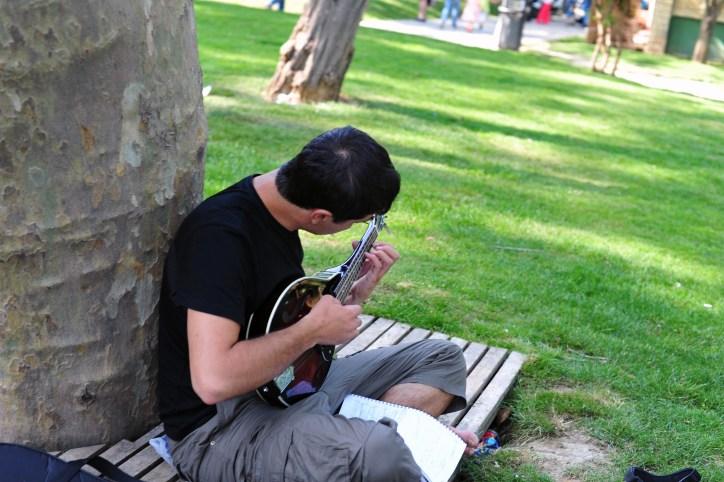 Park minstrel