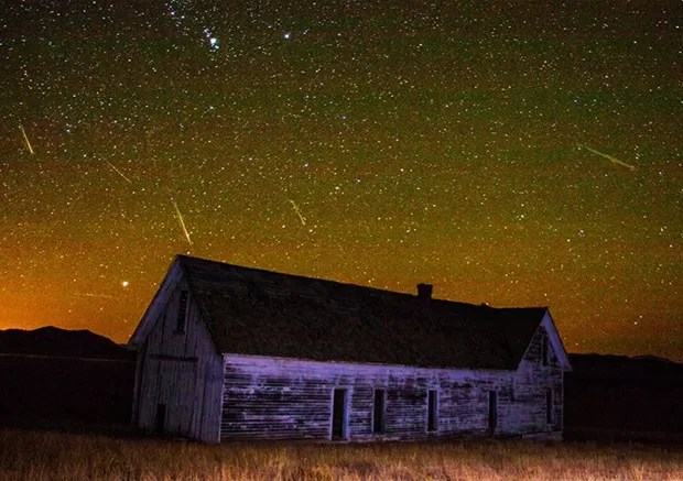 Chuva de meteoros vai até novembro, mas visibilidade é baixa