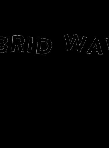 hybridwavesfinal