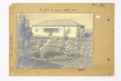 Image-430