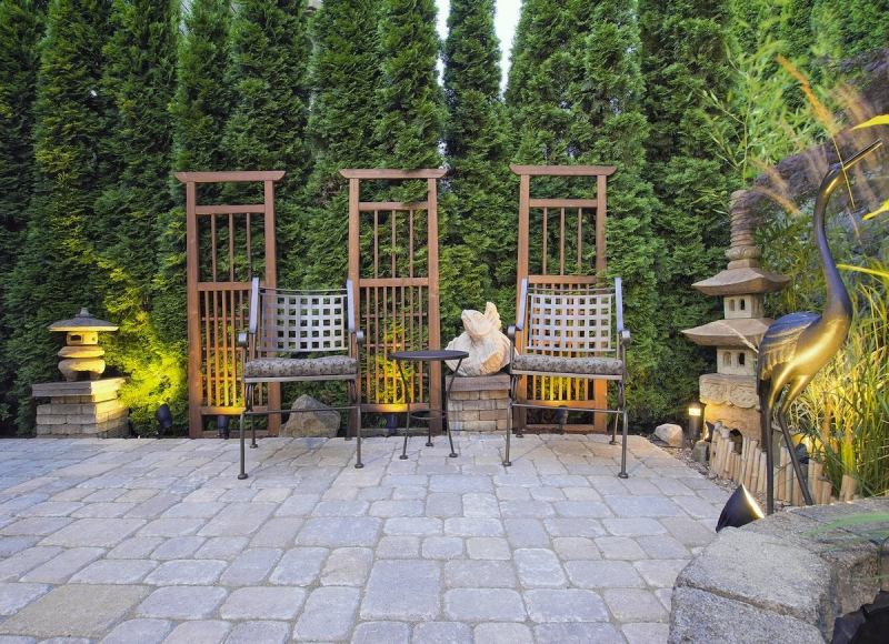 Large Of Plants For Backyard Landscaping