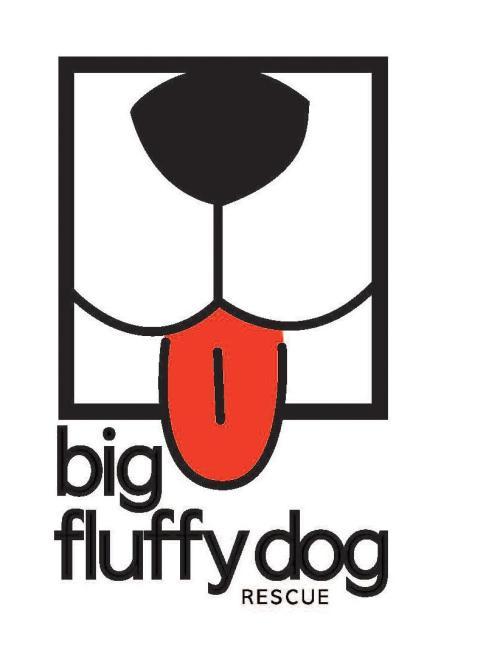 Medium Of Big Fluffy Dogs