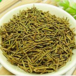 Small Crop Of Ma Huang Tea