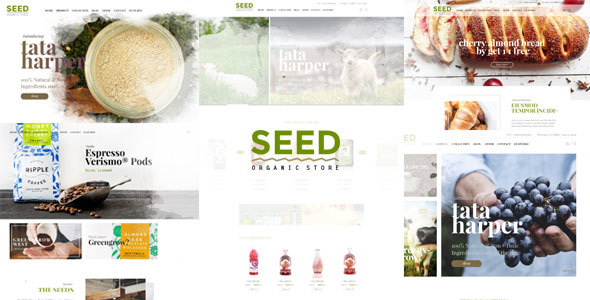 Download Seed - Organic WordPress Theme Organization WordPress Themes