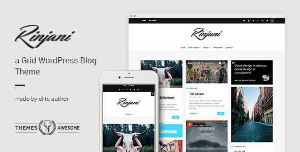 Download A Responsive Grid Blog Theme - Rinjani Grid WordPress Themes