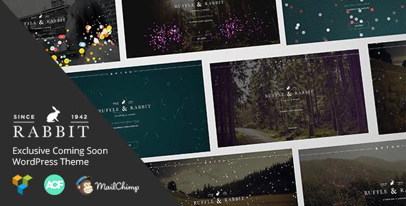 Download Rabbit - Exclusive Coming Soon WordPress Theme Coming Soon WordPress Themes