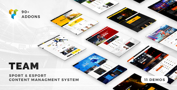 Download Team - Soccer, Football, Hockey, Basketball   eSport & Gaming   Sport Club News WordPress Theme Game WordPress Themes
