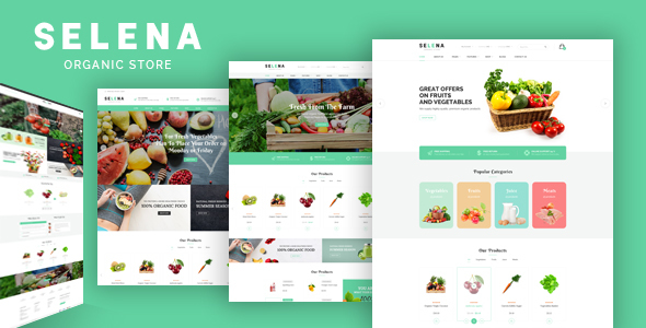 Download Selena - Organic Food Store Theme for WooCommerce WordPress Green WordPress Themes