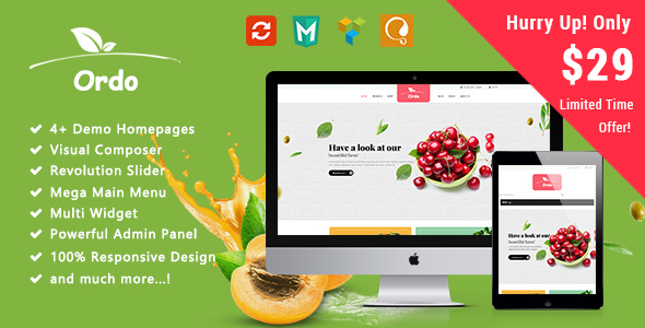 Download Ordo - Organic Responsive WooCommerce WordPress Theme Organization WordPress Themes
