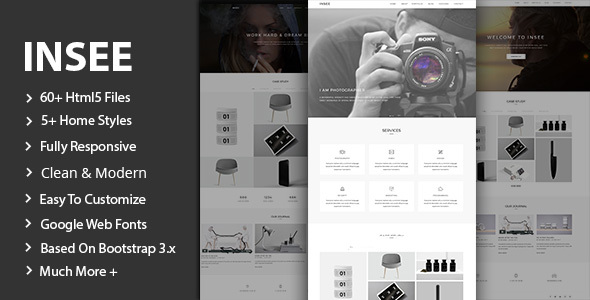 Download Insee - Minimal Portfolio Template Video Blogger Templates