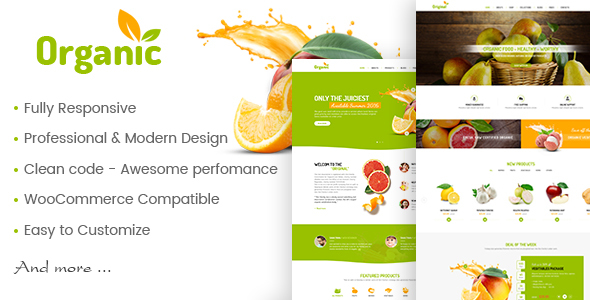 Download AmyOrganic - Organic and Healthy Theme for WordPress Organization WordPress Themes