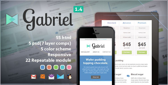 Download Gabriel - Responsive E-mail Template Brown Html Templates