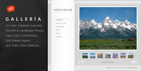 Download Galleria - Photography and Portfolio Template Brown Html Templates