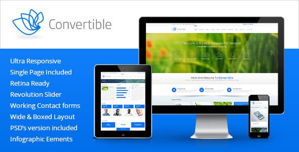 Download Convertible - Responsive HTML5 Template Amp WordPress Themes