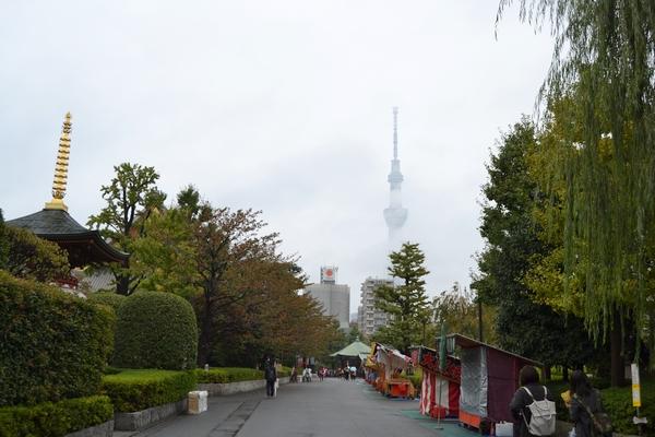 06 Japon - sabali blog