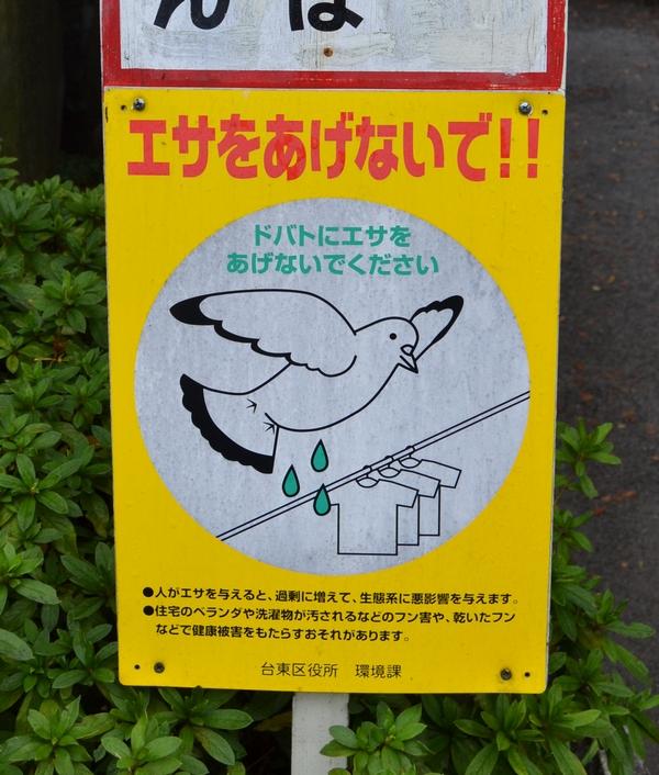 07 Japon - sabali blog