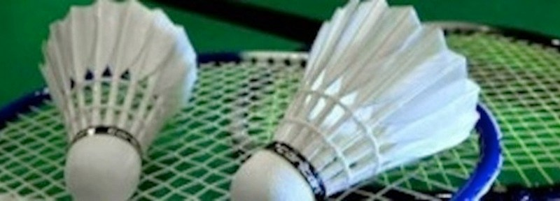 badminton-2_v_Variation_6-300x100