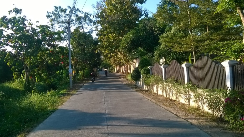 The lane behind our house, in the middle of Chiang Mai, Thailand.